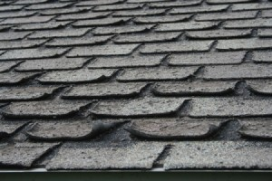 curling, shingles, roofing, roof, hamilton, contractor, company